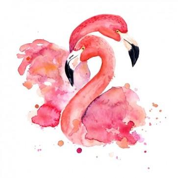 Flamingo love