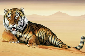 Tiger - Bed of Sand