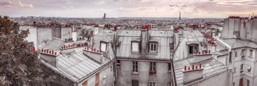 Assaf Frank - Paris Roof Tops
