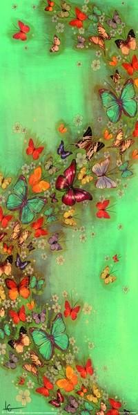 Buttleflies