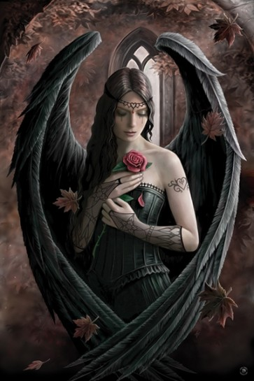 Anne Stokes - Angel Rose