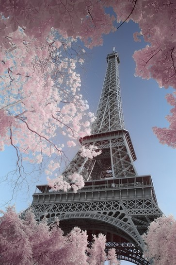 Paris - Infrared Eiffel-Tower