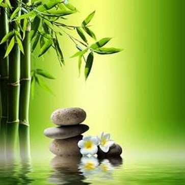Bamboo and Stones on Water