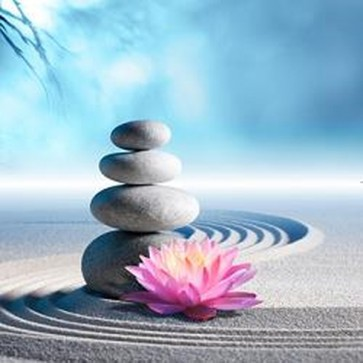 Lily and Spa Stones in Zen Garden