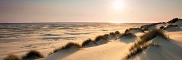 Sand Dunes - Sunny