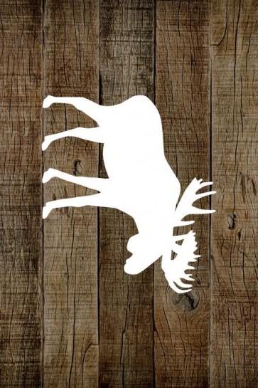 BBR - Moose