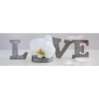 Zen Orchid - Love