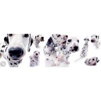 Yoneo Morita - Dalmatians