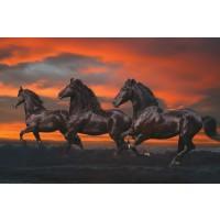 Bob Langrish - Mystical Horses