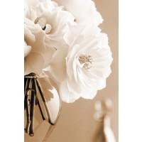 Christine Zalewski - Roses in Sepia