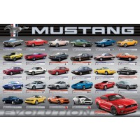 Ford - Mustang Evolution 50th LS