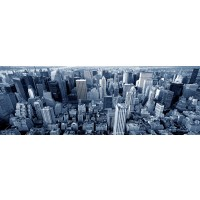 Jay Patterson - Arial View of Manhattan NY