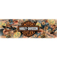 Harley-Davidson - Travel