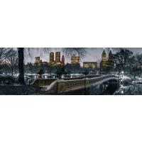 New York Bow Bridge Central Park