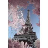 Paris - Infrared Eiffel-Tower