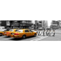 NY-Yellow taxi - Penguins