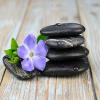 Black Zen Stones With Purple Flower