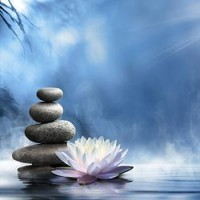 Purity Of The Zen Message