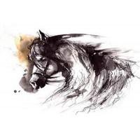 Horse Traveling
