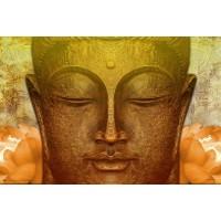 Buddha - Abiding in Mindfulness