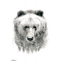 Spirit Animals & Trees - Bear