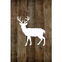 BBR - Deer