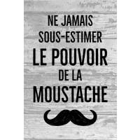 Moustache - ne jamais sous-estimer